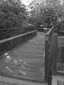 Blk N White Bridge